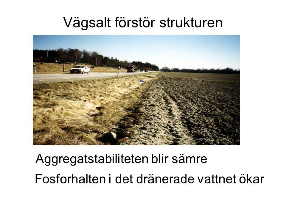 Vägsalt förstör strukturen Aggregatstabiliteten blir sämre Fosforhalten i det dränerade vattnet ökar