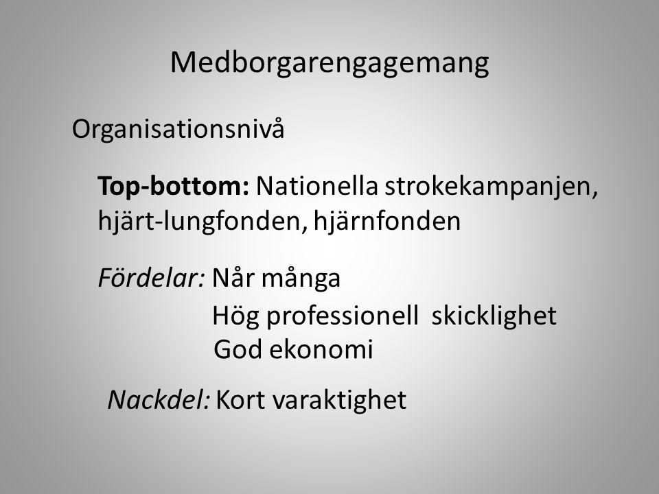 Organisationsnivå(forts) Bottom-top: Patient-/funktionshinder- organisationer Fördelar: Egna erfarenheter Långvarigt engagemang Nackdelar: Hög ålder Mig, mitt, mina Små organisationer Svag ekonomisk bas