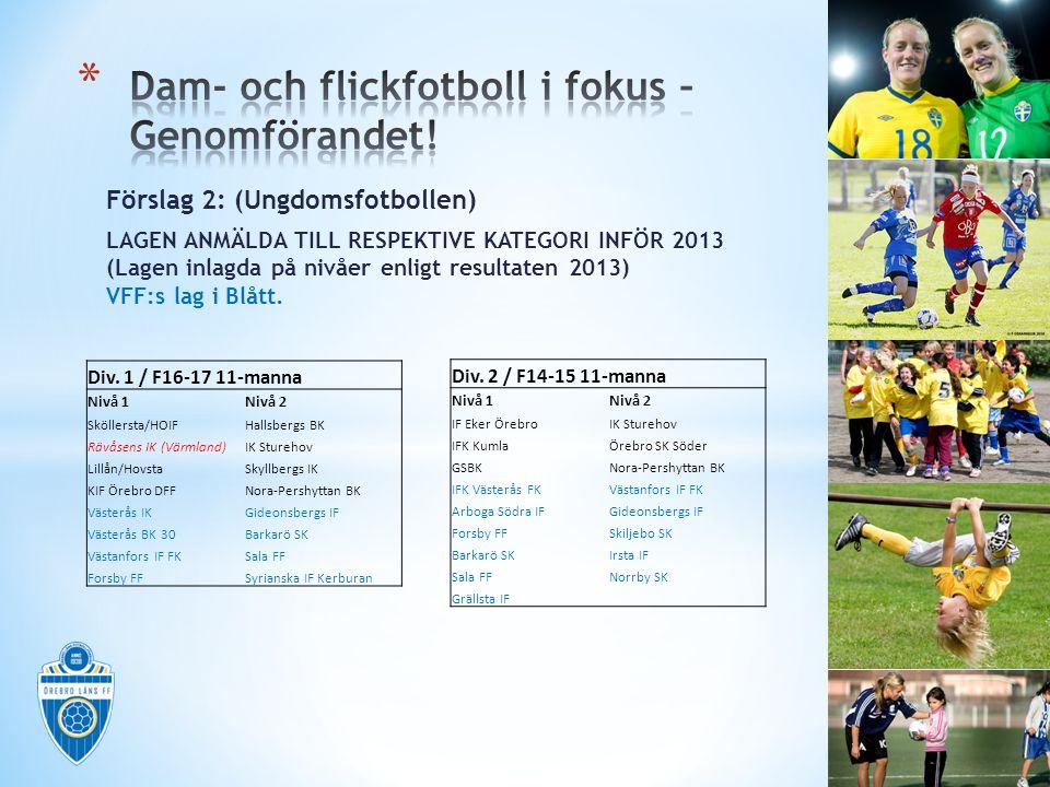 Förslag 2: (Ungdomsfotbollen) LAGEN ANMÄLDA TILL RESPEKTIVE KATEGORI INFÖR 2013 (Lagen inlagda på nivåer enligt resultaten 2013) VFF:s lag i Blått.