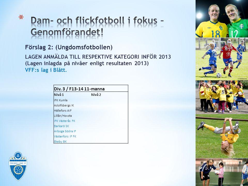 Förslag 2: (Ungdomsfotbollen) LAGEN ANMÄLDA TILL RESPEKTIVE KATEGORI INFÖR 2013 (Lagen inlagda på nivåer enligt resultaten 2013) VFF:s lag i Blått. Di