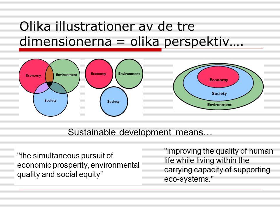 Olika illustrationer av de tre dimensionerna = olika perspektiv….