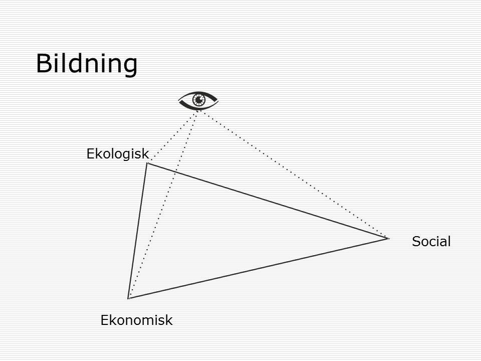 Bildning Ekonomisk Ekologisk Social