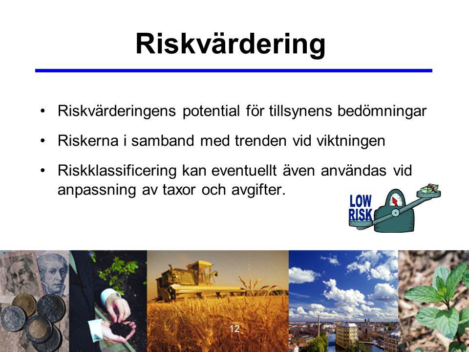 12 Riskvärdering Riskvärderingens potential för tillsynens bedömningar Riskerna i samband med trenden vid viktningen Riskklassificering kan eventuellt