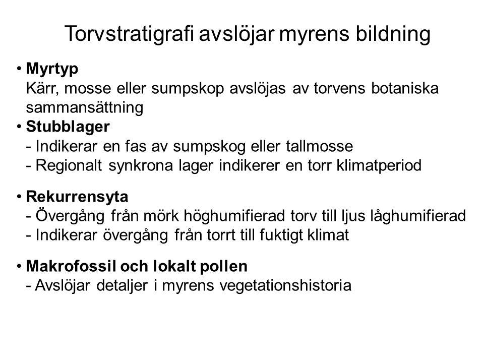 Myrtyp Kärr, mosse eller sumpskop avslöjas av torvens botaniska sammansättning Stubblager - Indikerar en fas av sumpskog eller tallmosse - Regionalt s