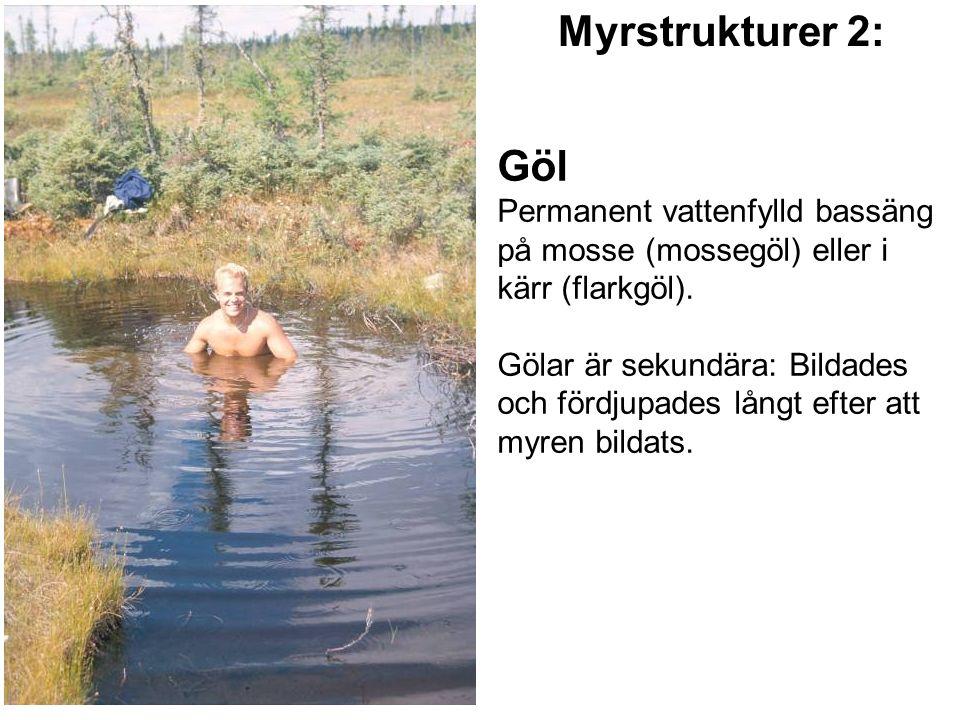 Göl Permanent vattenfylld bassäng på mosse (mossegöl) eller i kärr (flarkgöl). Gölar är sekundära: Bildades och fördjupades långt efter att myren bild
