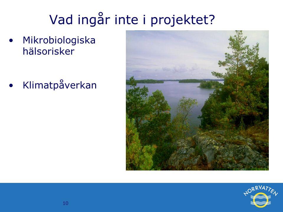 10 Vad ingår inte i projektet? Mikrobiologiska hälsorisker Klimatpåverkan
