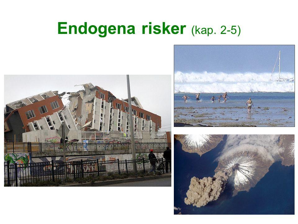 Endogena risker (kap. 2-5)