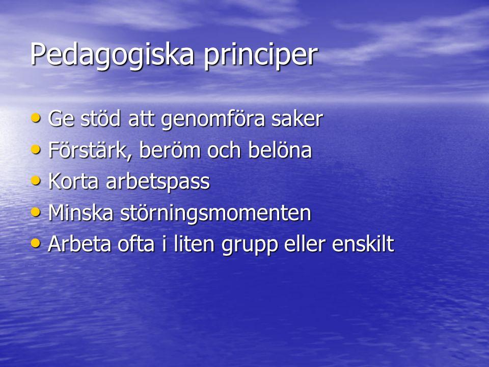 Pedagogiska principer Ge stöd att genomföra saker Ge stöd att genomföra saker Förstärk, beröm och belöna Förstärk, beröm och belöna Korta arbetspass K