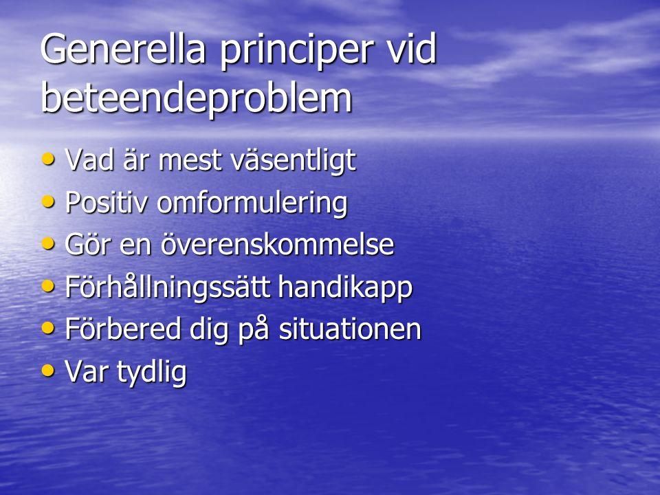 Generella principer vid beteendeproblem Vad är mest väsentligt Vad är mest väsentligt Positiv omformulering Positiv omformulering Gör en överenskommel