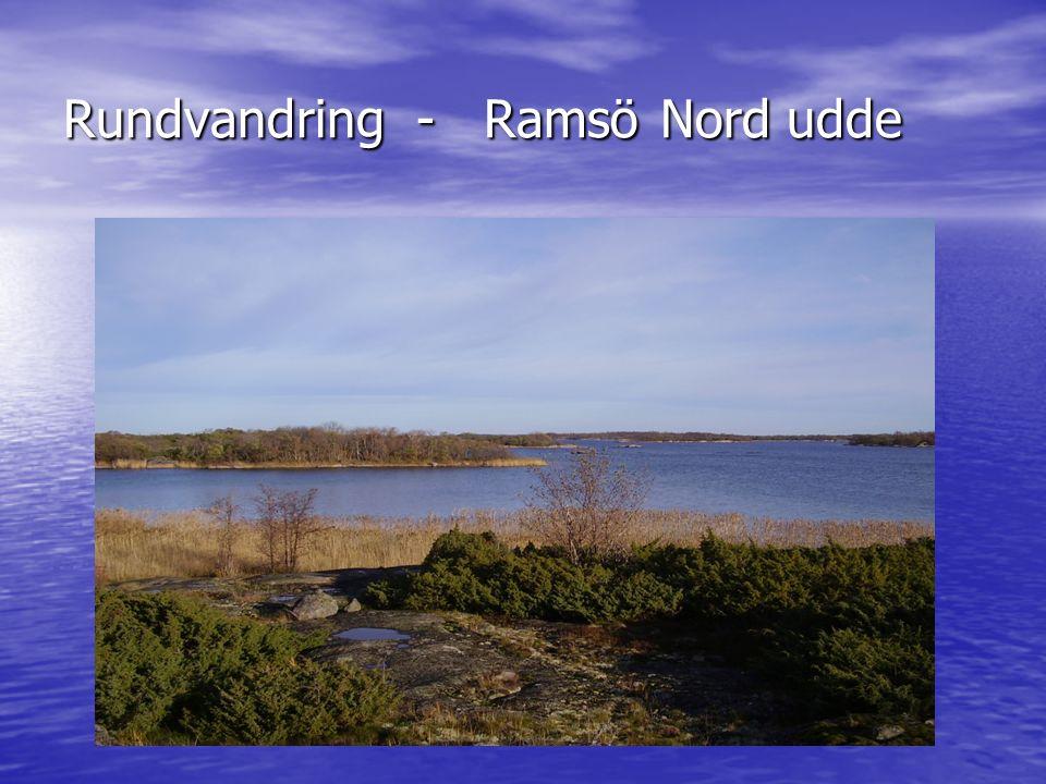 Rundvandring - Ramsö Nord udde