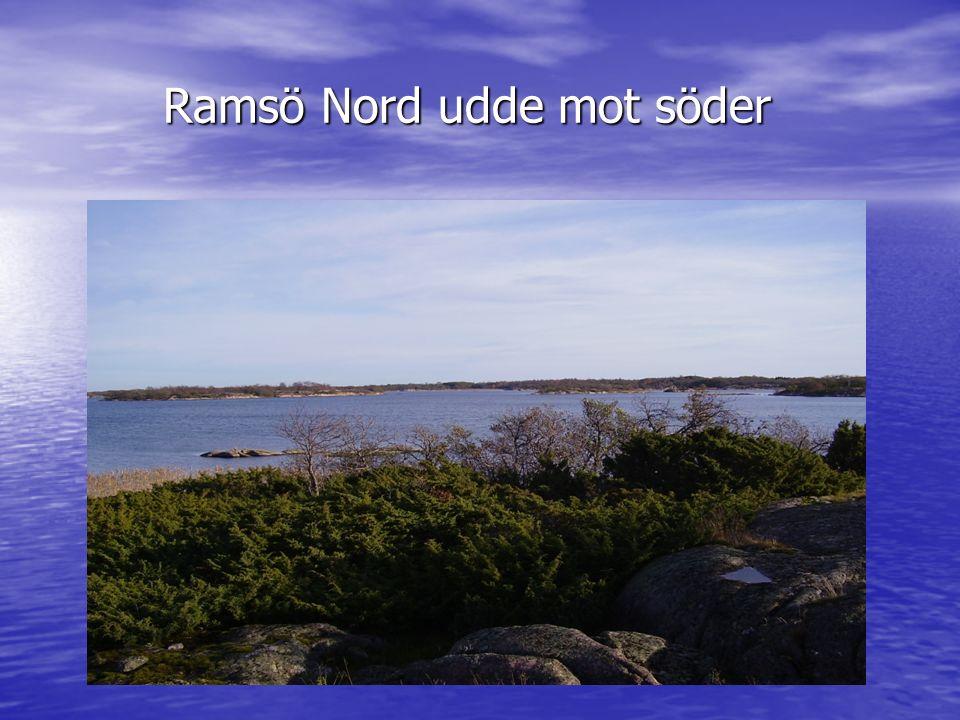 Ramsö Nord udde mot söder Ramsö Nord udde mot söder