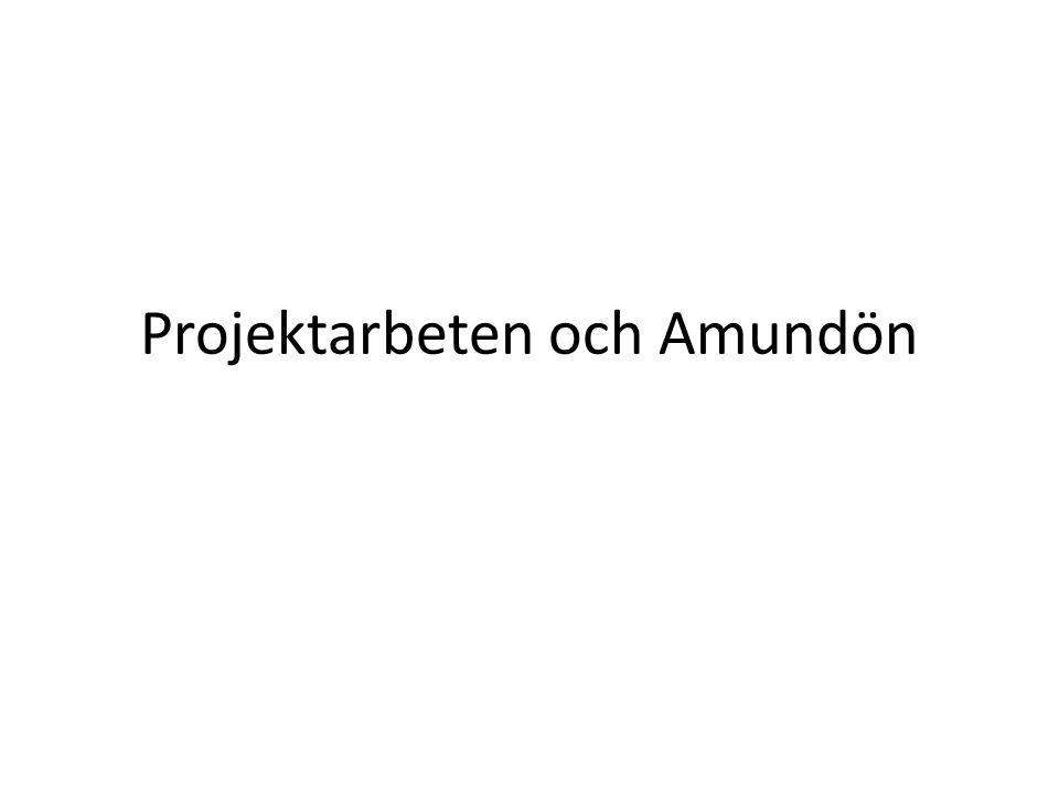 Projektarbeten och Amundön