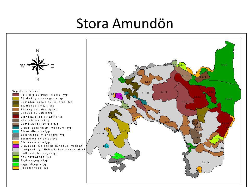 Stora Amundön