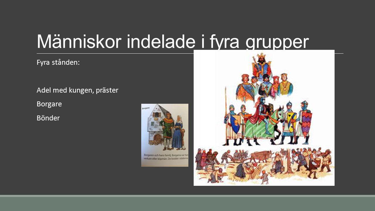 Människor indelade i fyra grupper Fyra stånden: Adel med kungen, präster Borgare Bönder