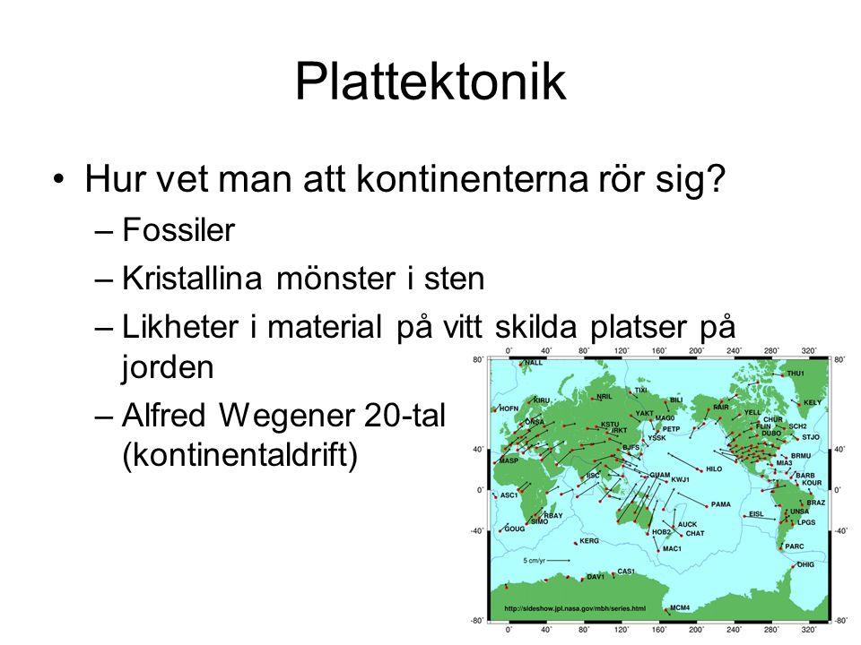Plattektonik Hur vet man att kontinenterna rör sig.