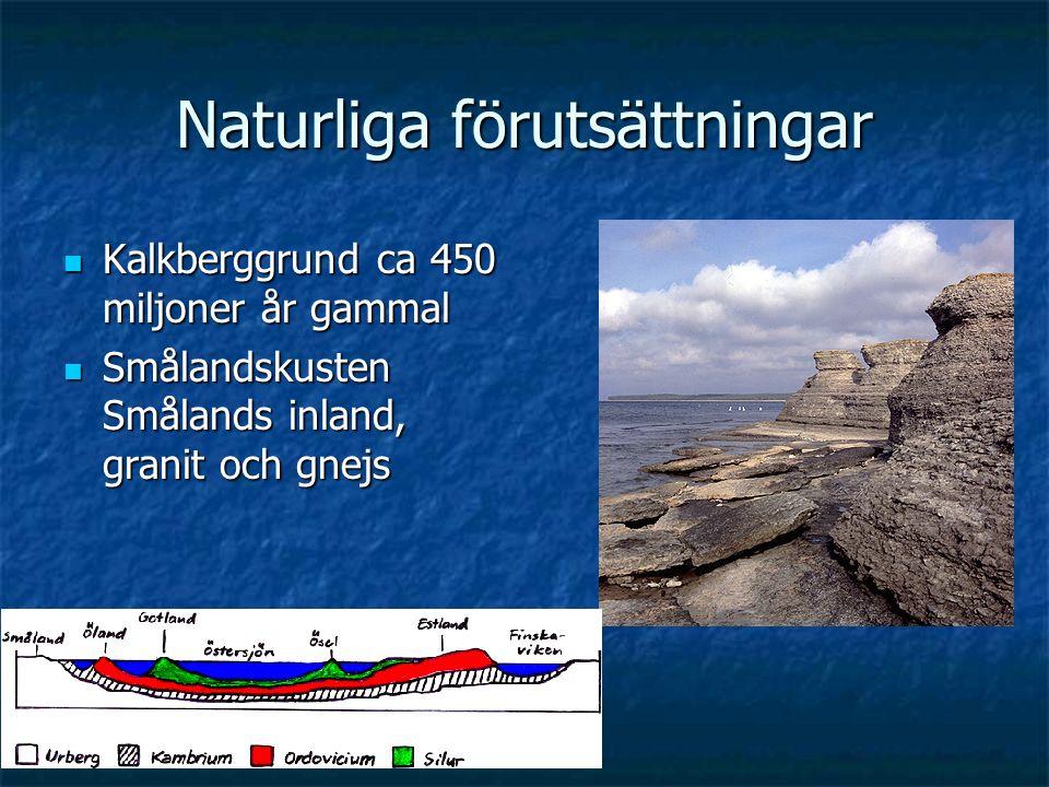 Naturliga förutsättningar Kalkberggrund ca 450 miljoner år gammal Kalkberggrund ca 450 miljoner år gammal Smålandskusten Smålands inland, granit och g