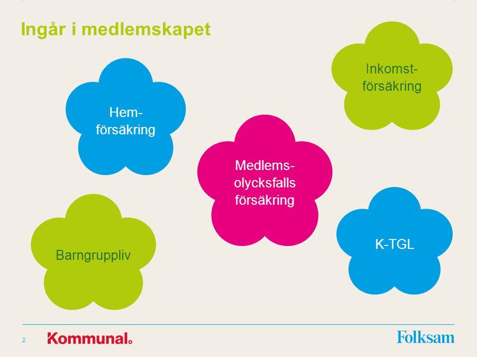 Innehållsyta Rubrikyta 2 Ingår i medlemskapet Hem- försäkring Inkomst- försäkring Medlems- olycksfalls försäkring Barngruppliv K-TGL