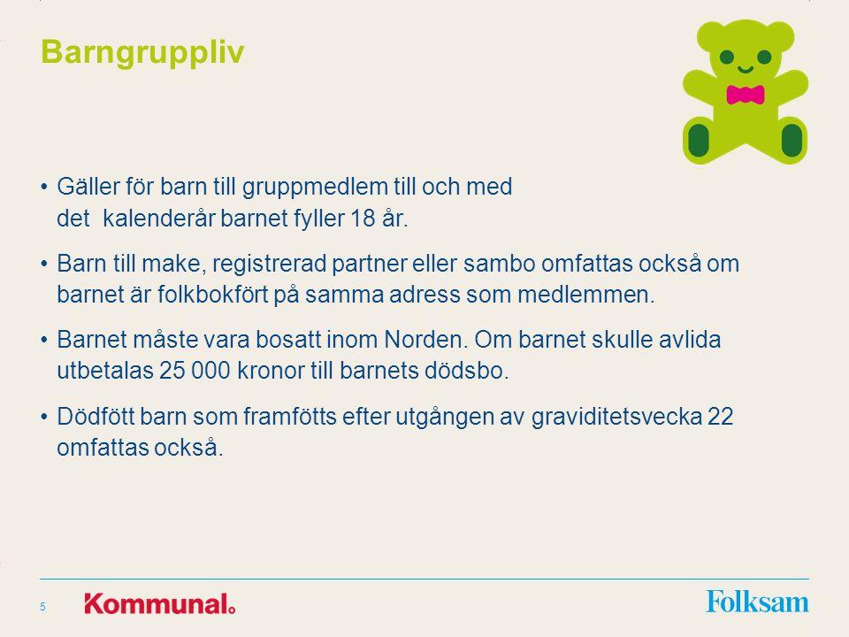 Innehållsyta Rubrikyta Barngruppliv Gäller för barn till gruppmedlem till och med det kalenderår barnet fyller 18 år.