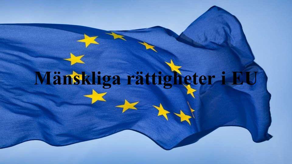 Mänskliga rättigheter i EU