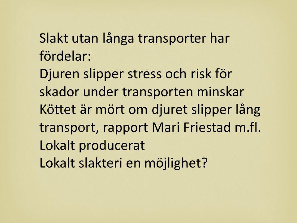 Slakt utan långa transporter har fördelar: Djuren slipper stress och risk för skador under transporten minskar Köttet är mört om djuret slipper lång transport, rapport Mari Friestad m.fl.