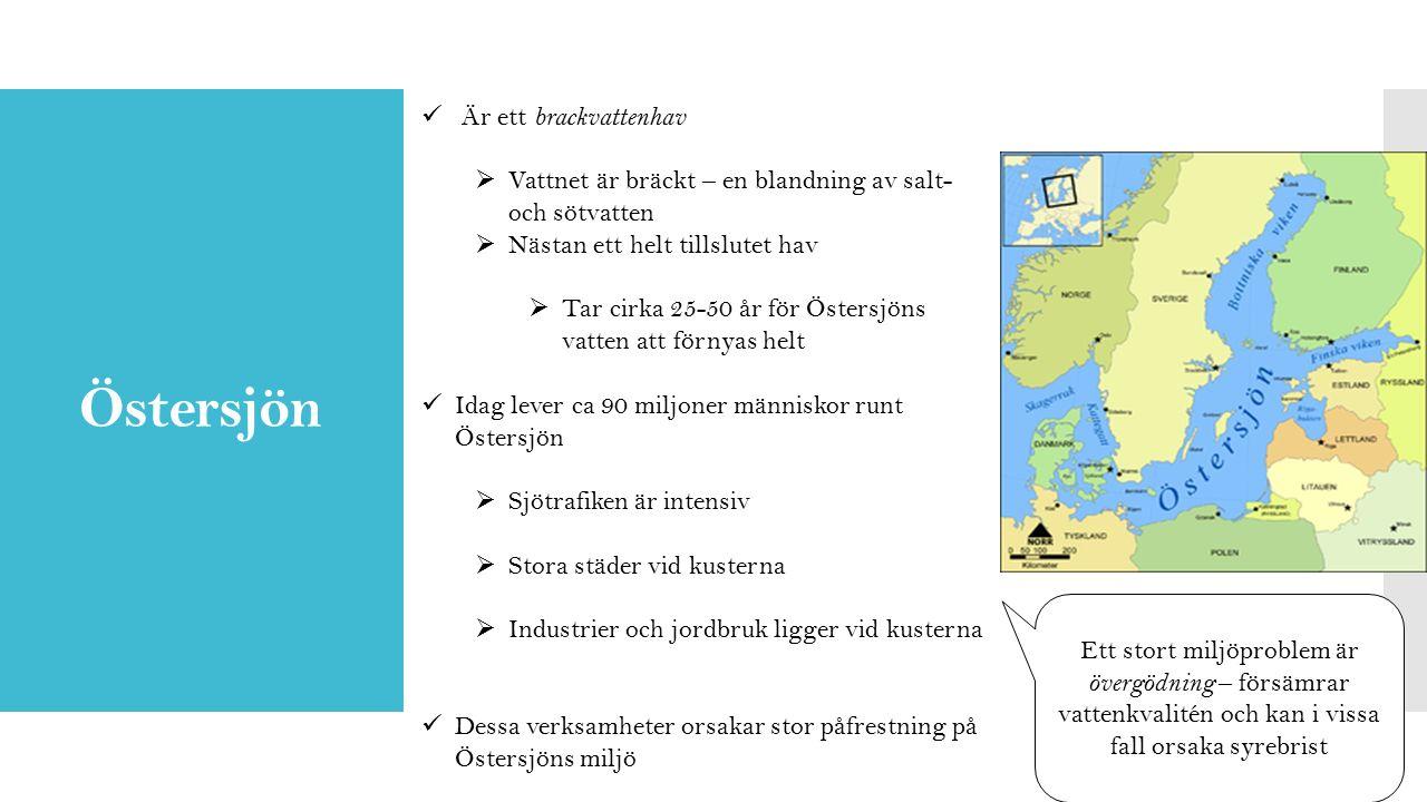 Östersjön Är ett brackvattenhav  Vattnet är bräckt – en blandning av salt- och sötvatten  Nästan ett helt tillslutet hav  Tar cirka 25-50 år för Östersjöns vatten att förnyas helt Idag lever ca 90 miljoner människor runt Östersjön  Sjötrafiken är intensiv  Stora städer vid kusterna  Industrier och jordbruk ligger vid kusterna Dessa verksamheter orsakar stor påfrestning på Östersjöns miljö Ett stort miljöproblem är övergödning – försämrar vattenkvalitén och kan i vissa fall orsaka syrebrist
