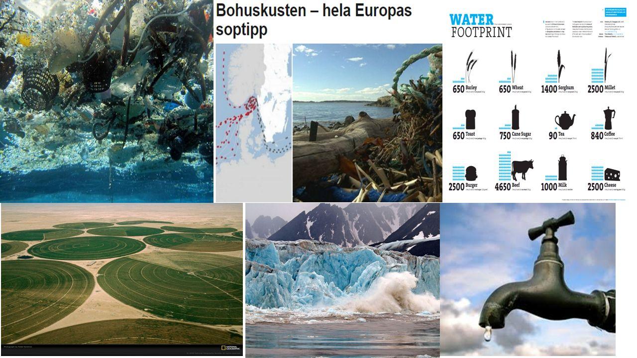 Vattenfördelning Notera hur liten andel som är sötvatten (2,5 %) Havens salthalt  Genomsnittlig salthalt i världshaven är 35 promille  Persiska viken – salthalt på 41 promille  Östersjön – salthalt mellan 7-13 promille (bräckt vatten) Cirka en fjärdedel av allt sötvatten på jorden utgörs av grundvatten.