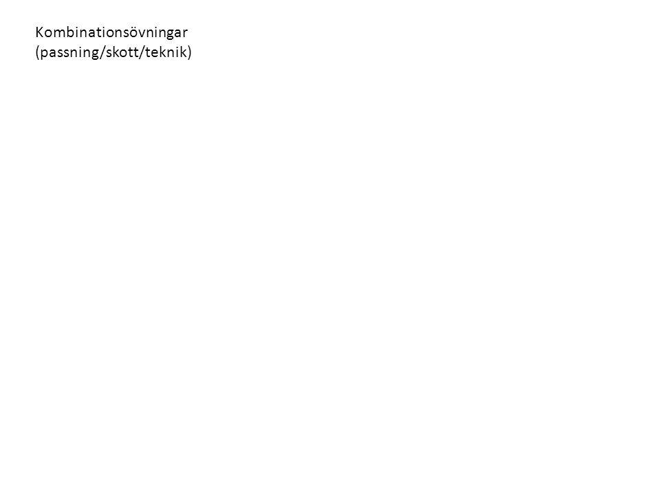 Kombinationsövningar (passning/skott/teknik)