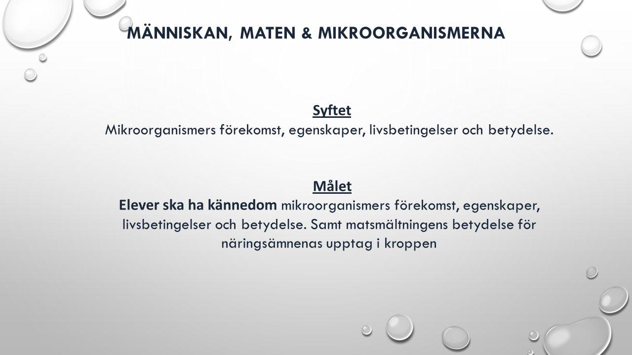 MÄNNISKAN, MATEN & MIKROORGANISMERNA Syftet Mikroorganismers förekomst, egenskaper, livsbetingelser och betydelse. Målet Elever ska ha kännedom mikroo