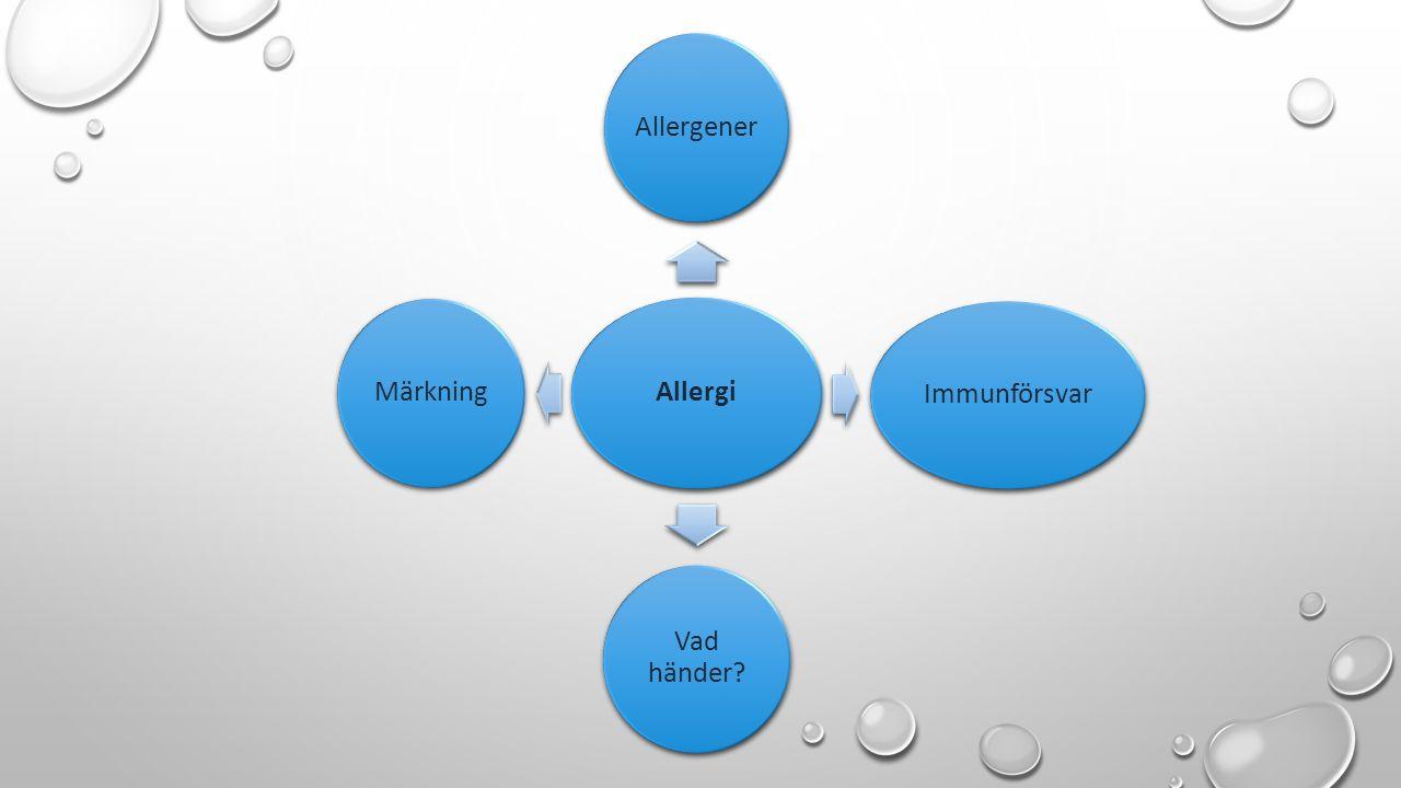 Allergi AllergenerImmunförsvar Vad händer? Märkning