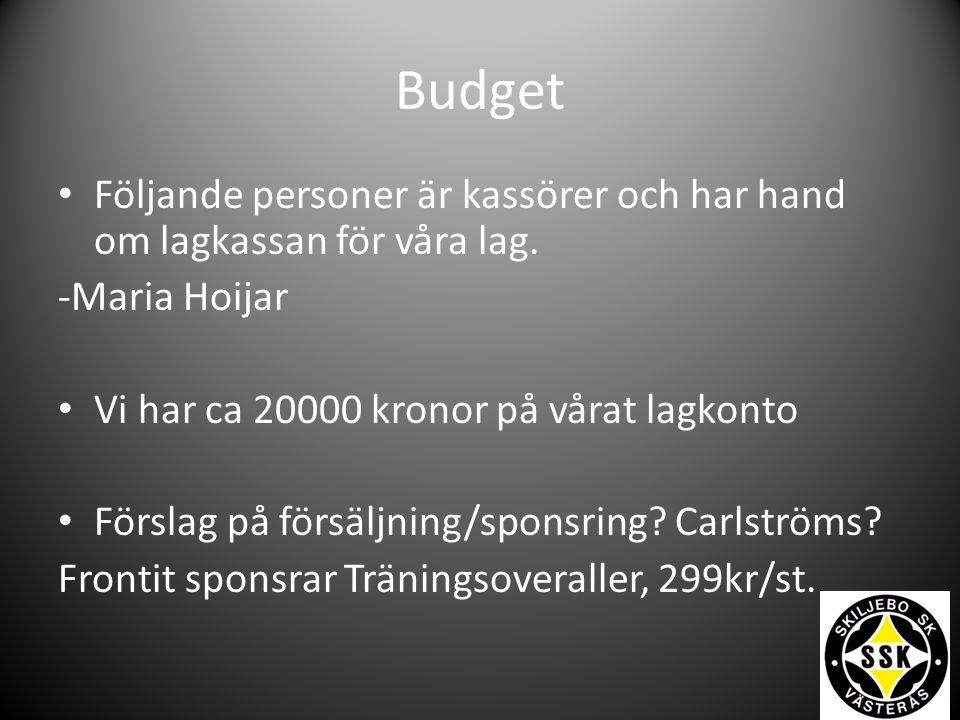 Budget Följande personer är kassörer och har hand om lagkassan för våra lag. -Maria Hoijar Vi har ca 20000 kronor på vårat lagkonto Förslag på försälj