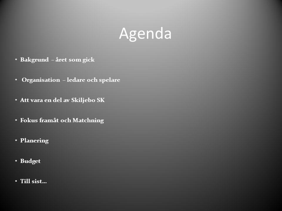 Agenda Bakgrund – året som gick Organisation – ledare och spelare Att vara en del av Skiljebo SK Fokus framåt och Matchning Planering Budget Till sist