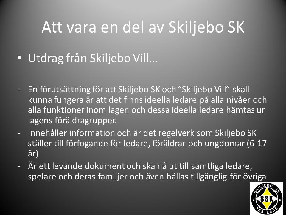 Att vara en del av Skiljebo SK Utdrag från Skiljebo Vill… -En förutsättning för att Skiljebo SK och Skiljebo Vill skall kunna fungera är att det finns ideella ledare på alla nivåer och alla funktioner inom lagen och dessa ideella ledare hämtas ur lagens föräldragrupper.