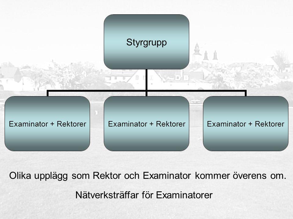 Styrgrupp Examinator + Rektorer Olika upplägg som Rektor och Examinator kommer överens om.