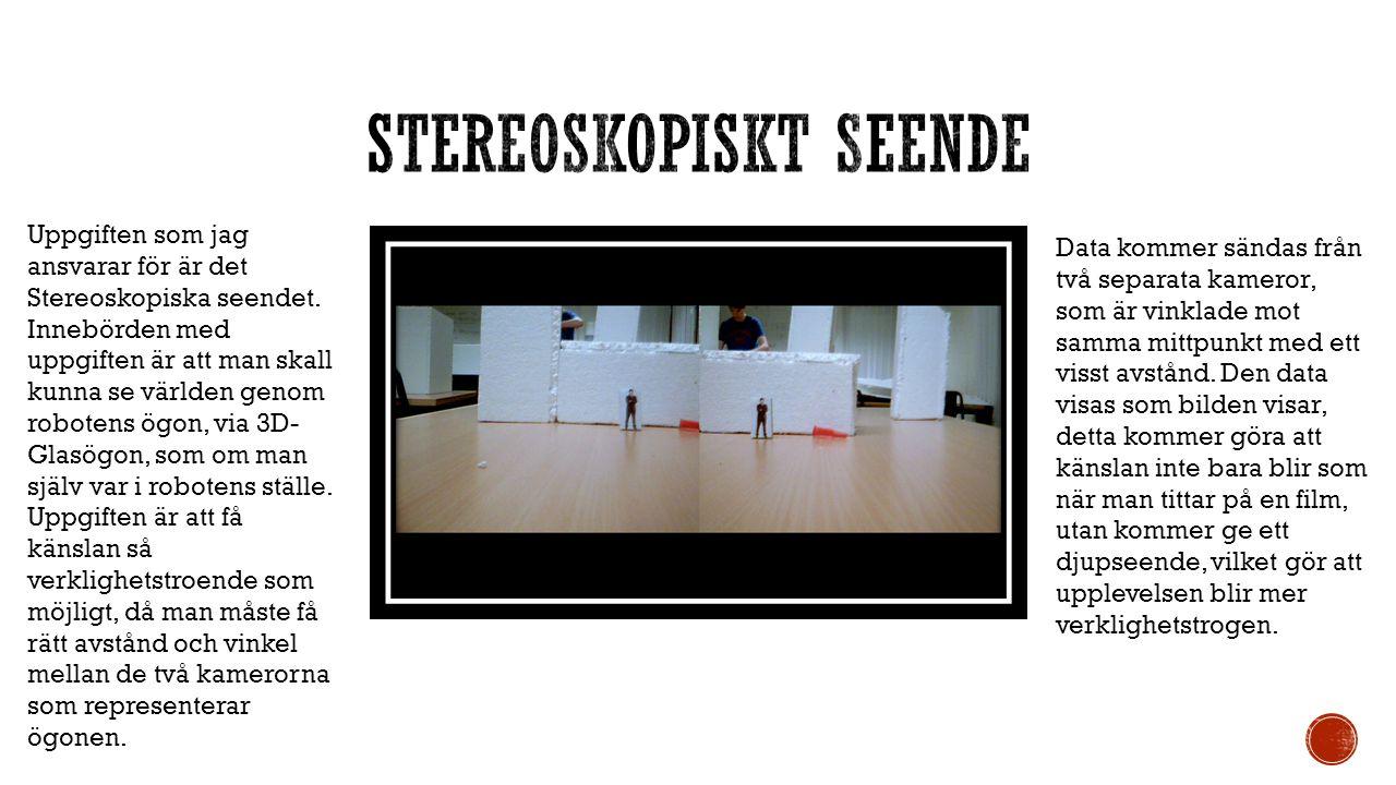 Uppgiften som jag ansvarar för är det Stereoskopiska seendet. Innebörden med uppgiften är att man skall kunna se världen genom robotens ögon, via 3D-