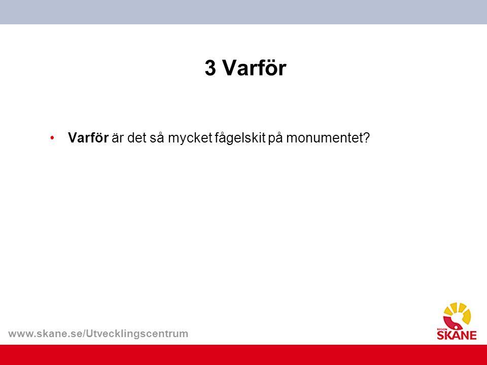www.skane.se/Utvecklingscentrum 3 Varför Varför är det så mycket fågelskit på monumentet?
