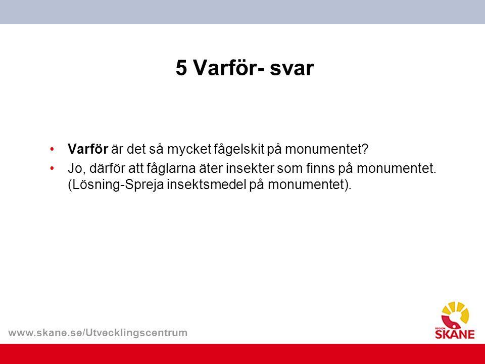 www.skane.se/Utvecklingscentrum 5 Varför- svar Varför är det så mycket fågelskit på monumentet.