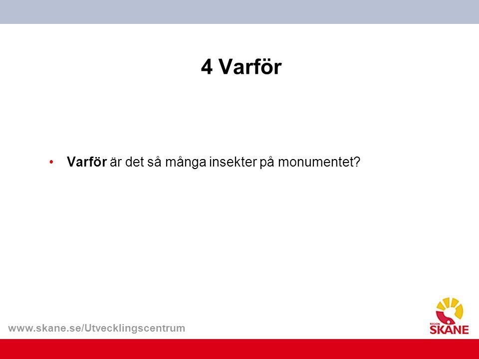 www.skane.se/Utvecklingscentrum 4 Varför Varför är det så många insekter på monumentet?