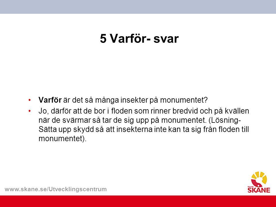 www.skane.se/Utvecklingscentrum 5 Varför- svar Varför är det så många insekter på monumentet.