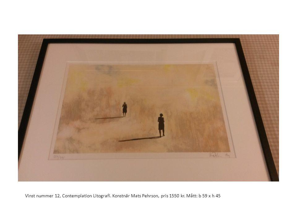 Vinst nummer 12, Contemplation Litografi. Konstnär Mats Pehrson, pris 1550 kr. Mått: b 59 x h 45