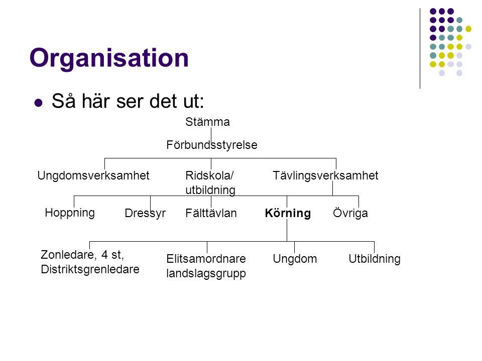 Organisation Så här ser det ut: Stämma Förbundsstyrelse UngdomsverksamhetRidskola/ utbildning Tävlingsverksamhet Hoppning DressyrFälttävlanKörningÖvri