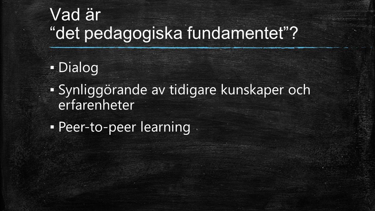 Vad är det pedagogiska fundamentet .