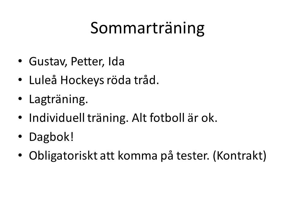 Sommarträning Gustav, Petter, Ida Luleå Hockeys röda tråd.