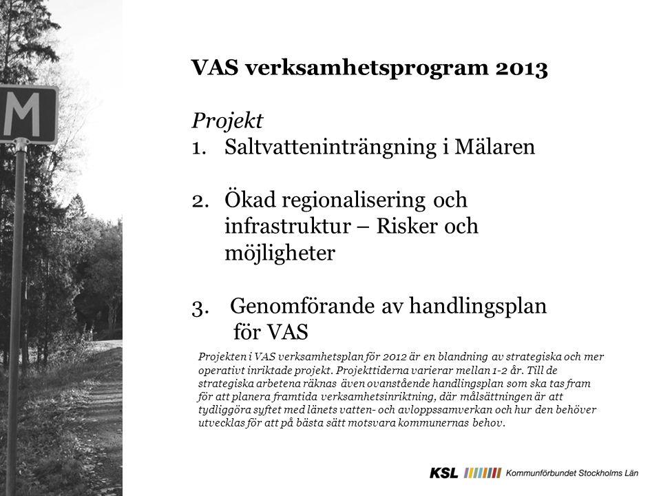 VAS verksamhetsprogram 2013 Projekt 1.Saltvatteninträngning i Mälaren 2.Ökad regionalisering och infrastruktur – Risker och möjligheter 3. Genomförand