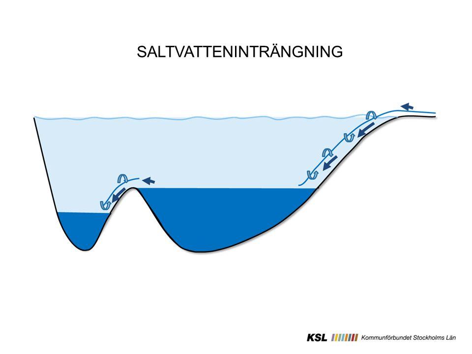 Mälaren Sveriges 3:e största sjö Vattentäkt för 2,5 miljoner invånare Snabbt växande region Klimatkänslig Area avrinningsområde: 22600km 2 (6 län, ca 60 kommuner) Area: 1100km 2 Utflöde: 5 Miljarder m 3 /år