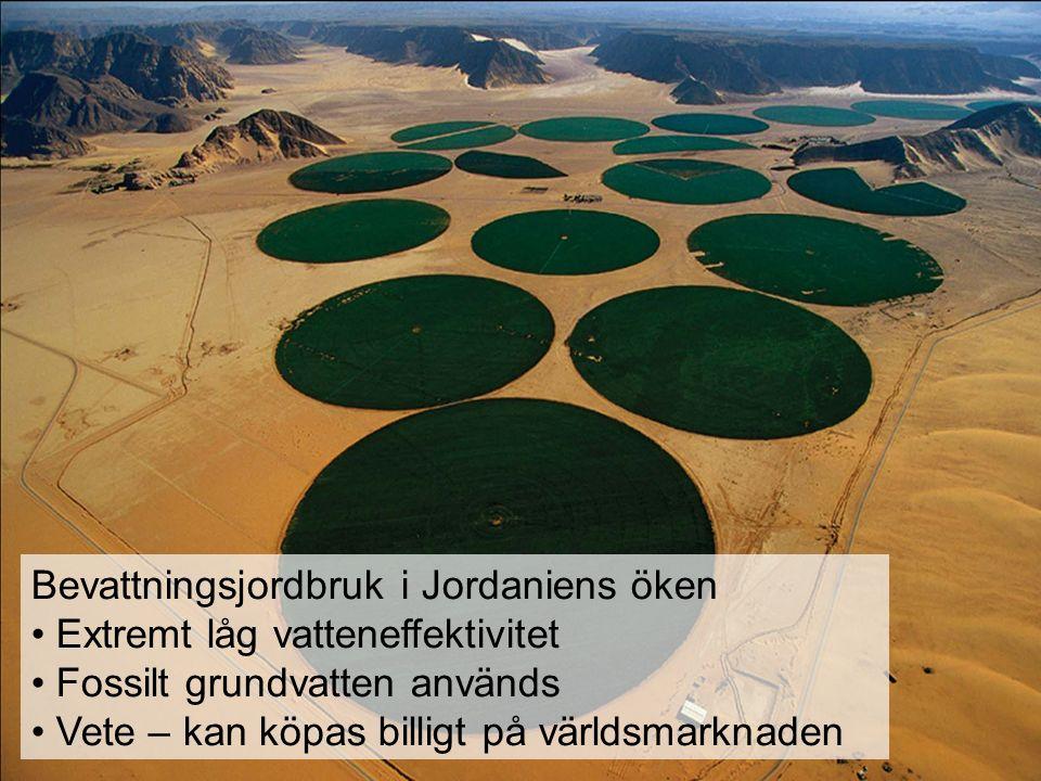 Bevattningsjordbruk i Jordaniens öken Extremt låg vatteneffektivitet Fossilt grundvatten används Vete – kan köpas billigt på världsmarknaden