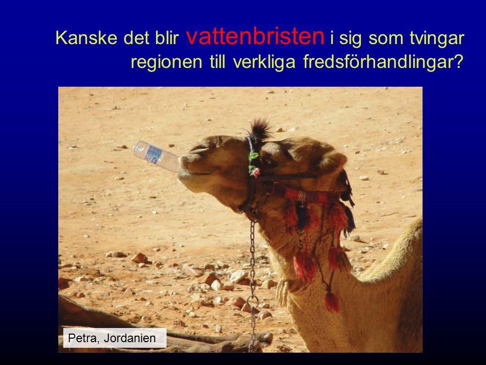 Kanske det blir vattenbristen i sig som tvingar regionen till verkliga fredsförhandlingar? Petra, Jordanien