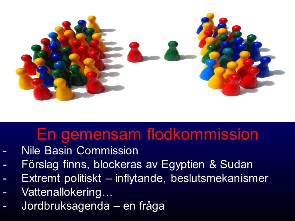 En gemensam flodkommission -Nile Basin Commission -Förslag finns, blockeras av Egyptien & Sudan -Extremt politiskt – inflytande, beslutsmekanismer -Vattenallokering… -Jordbruksagenda – en fråga