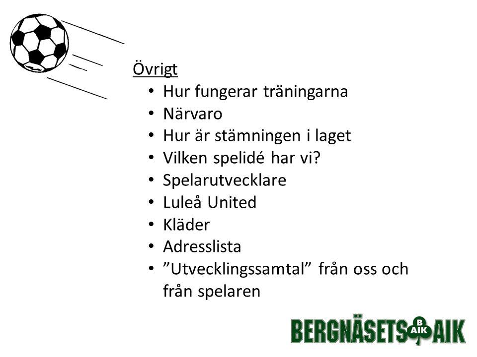 Seriespel Alla matcher är inte bokad Gemensam avfärd om match utanför Luleå 7 manna 19 spelare i truppen.