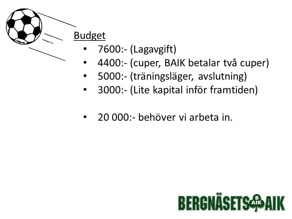 Budget 7600:- (Lagavgift) 4400:- (cuper, BAIK betalar två cuper) 5000:- (träningsläger, avslutning) 3000:- (Lite kapital inför framtiden) 20 000:- behöver vi arbeta in.