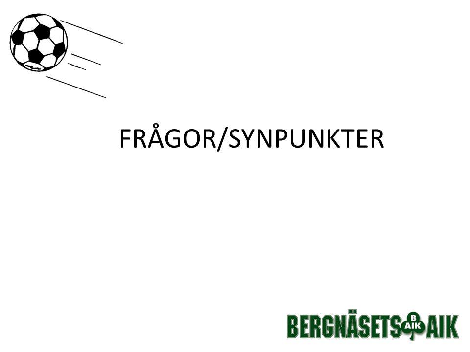 FRÅGOR/SYNPUNKTER